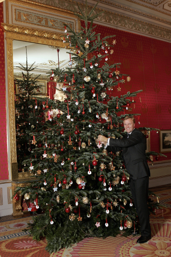 der erste weihnachtsbaum sterreichs stand in der. Black Bedroom Furniture Sets. Home Design Ideas