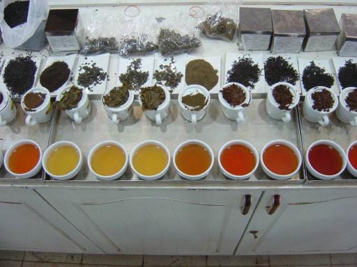"""Wie jedes Jahr freuen wir uns mit Spannung auf die frischen Teemuster der ersten Pflückung (First Flush) nach der Winterpause aus Darjeeling (Nordindien). Die Tees wurden von unseren Tea-Tastern sorgfältig verkostet, ausgewählt und nun eine kleine Menge per Flugzeug eingeflogen. (Teeverkostung """"Darjeeling 2008"""")"""