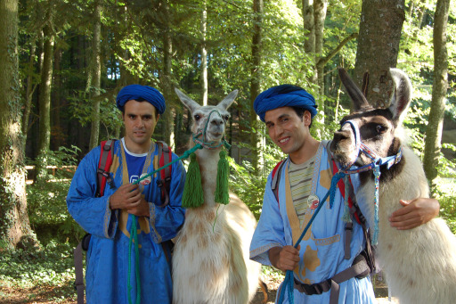 Marokko meets Oststeiermark - Brahim und Mohamed mit Lamas im Kraftpark Pöllau