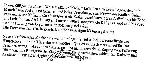 Hühnerbatterie Latschenberger: Gerichtsgutachter bestätigt Tierquälerei