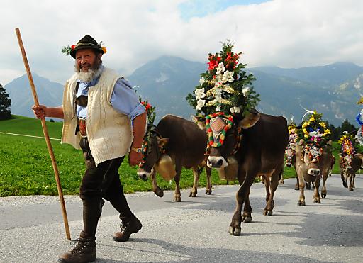 Am 24.September und 01.Oktober wird der traditionsreiche Reither Almabtrieb mit einem großen Fest gefeiert.