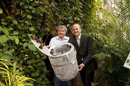 Leiner Geschäftsführer Paul Koch (rechts) übergibt die Schmetterlinge an Stephen Fried vom Schmetterlinghaus im Burggarten.