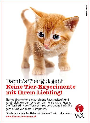 Tierärztekammer startet Kampagne für sorgsamen Umgang mit Tiermedikamenten
