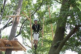 Der Neue Waldseilpark Kahlenberg öffnet Am 29 Juni Hoch4
