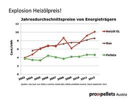 Heizkostenexplosion: Aktuelle Studie vergleicht Lebenszykluskosten ...