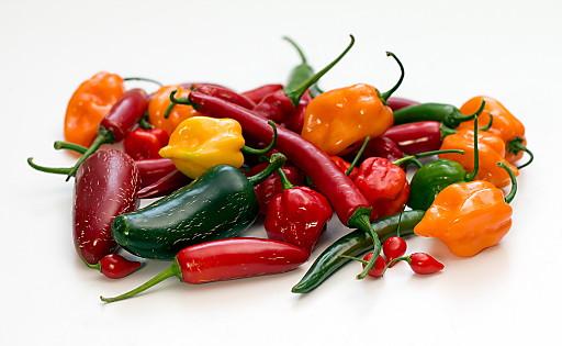 """Chili-Vielfalt aus dem eigenen Garten - Foto ausschließlich zur redaktionellen Verwendung mit Presse-Info """"Chili-Anbau bringt Spaß und Genuss"""" Die Verwendung dieses Bildes ist für redaktionelle Zwecke honorarfrei. Veröffentlichung bitte unter Quellenangabe: """"obs/Suncoast Peppers GmbH"""""""