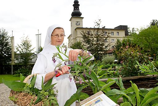 Heilsames aus dem Kräutergarten - durch Sr. Johanna aus Bad Mühllacken