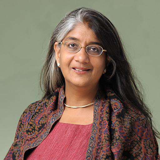 Shalini Randeria leitet ab 2015 das Wiener Institut für die Wissenschaften vom Menschen (IWM)