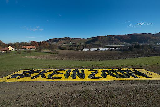 http://www.apa-fotoservice.at/galerie/7300 #KEINZAUN: AMNESTY-AKTION IM SÜDSTEIRISCHEN GRENZGEBIET - Rund 50 Amnesty-Aktivistinnen und Aktivisten legen in riesigen menschlichen Lettern. #KeinZaun im österreichisch-slowenischen Grenzgebiet. Wir setzten damit ein deutliches Zeichen gegen Grenzzäune. Sie erschweren die die Flucht nach Europa, gefährden Menschen und führen zu Menschenrechtsverletzungen.