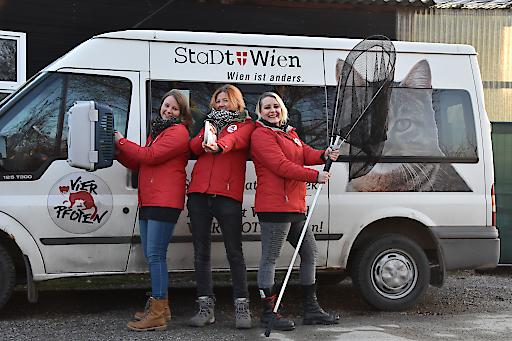 """Die VIER PFOTEN Mitarbeiterinnen Alexandra, Catarina und Barbara sind """"drei Engel für Wiens Streunerkatzen"""""""
