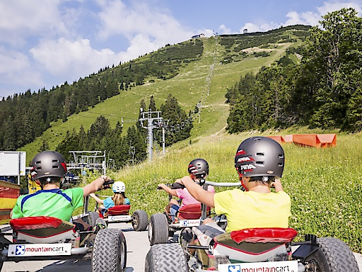 Mountaincarts Gemeindealpe MItterbach