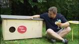 """Video mit Kultcharakter: """"Heimwerker der Nation"""" baut für VIER PFOTEN ein Katzenhotel"""