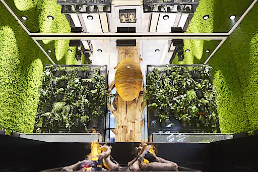 Lebende Wände: Grüner Biogena Flagshipstore in der Wiener Innenstadt