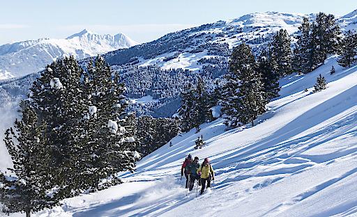 Schneeschuhwandern in der Ferienregion Hall-Wattens in Tirol