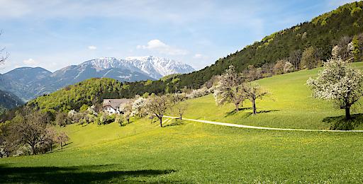 Wandern in den Wiener Alpen - mit dem Schneeberg immer im Blick. Besten Service für Wanderer bieten die zertifizierten Wanderhotels im Wanderdorf Puchberg am Schneeberg.