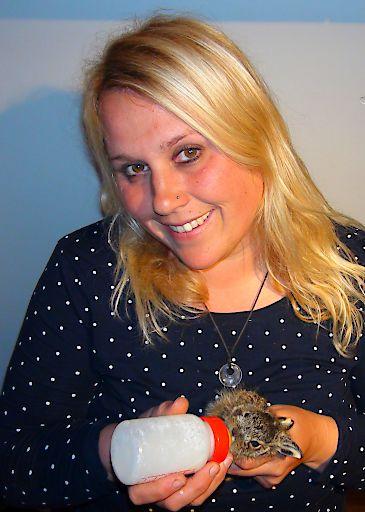 """PFOTENHILFE warnt vor übereilter Wildtier""""rettung"""": drei Hasenbabys an einem Tag in PFOTENHILFE gebracht"""