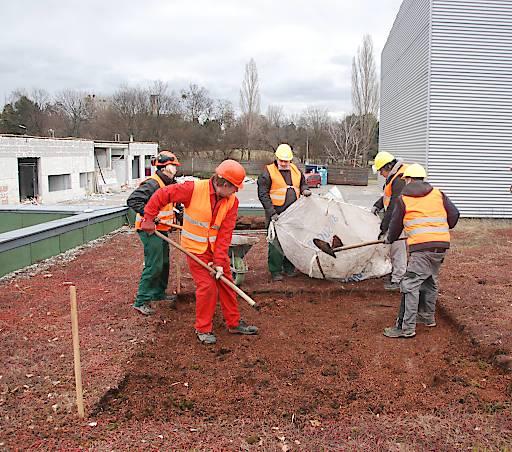 BauKarussell schafft neue Arbeitsplätze am Bau mit Re-Use