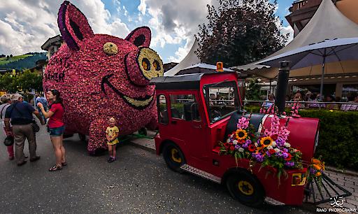Blumenwaagen in Form eines Sparschweines.
