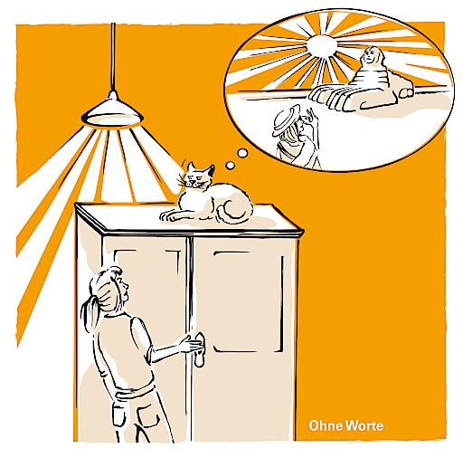 """Cartoon aus der Broschüre """"Leitfaden zum Katzenglück"""" vom Verein """"Tierschutz macht Schule"""" Mehr Katzen-Cartoons unter: www.tierschutzmachtschule.at Cartoon: Konzept: Daniela Lipka Illustration: Inga Seidl"""