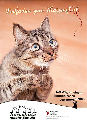"""Cover der Broschüre """"Leitfaden zum Katzenglück"""" vom Verein """"Tierschutz macht Schule"""": Bestellung für Tierheime und Privatpersonen unter: www.tierschutzmachtschule.at"""