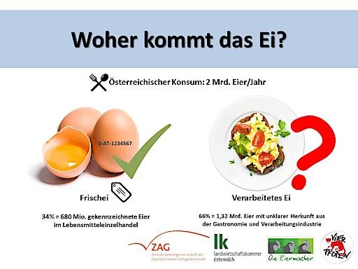 Daten und Fakten rund um's Ei