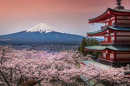 Japan ist Newcomer in der Saison 2017/18 bei Ruefa