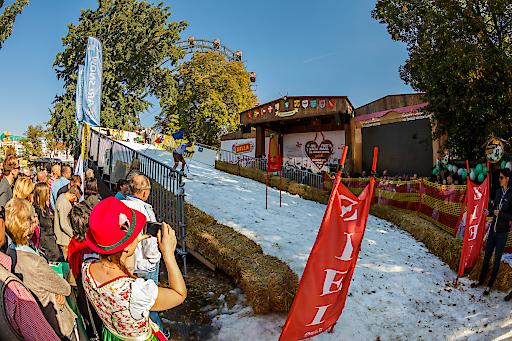 Das gab es noch nie! Auf der Wiener Wiesn, dem Jahr für Jahr an Popularität gewinnendem Herbstfest im Prater, matchten sich am Samstag die Besucher im Riesentorlauf.