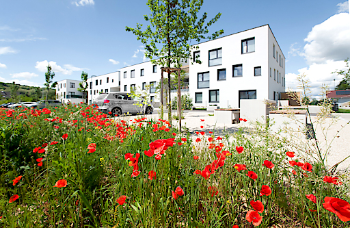 Bild zu OTS - NÖ Wohnbaupreis – Kategorie 'Geschoßwohnbau': Schönere Zukunft-Siegerprojekt Großweikersdorf