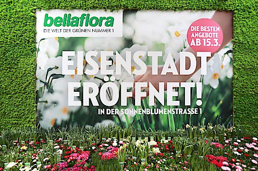 http://www.apa-fotoservice.at/galerie/12727 Ab 15. März 2018 führt der Weg zu nachhaltigem Garteln in die Eisenstädter Sonnenblumenstraße 1. An diesem Tag eröffnet Österreichs Grüne Nr. 1 hier ihre neue Filiale und startet mit FLOWER POWER und üppig blühenden Angeboten in die junge Gartensaison.