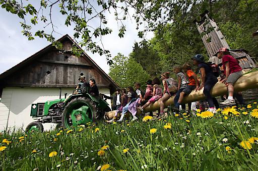 ÖFM Stübing - Kinder begleiten den Maibaum beim Einzug in das Museumstal
