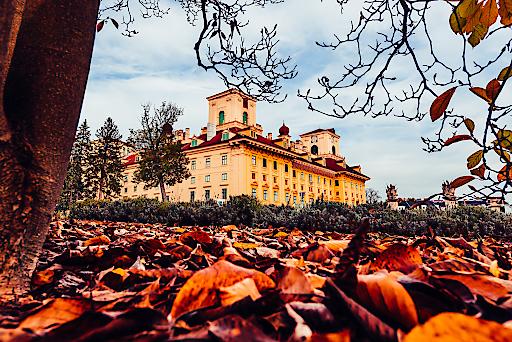 Schloss Esterházy wird zum Festival-Hotspot im September