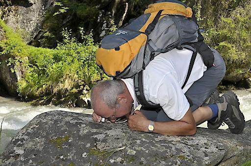 Prof. Dr. Roman Türk bei der Erhebung von Flechten im Nationalpark Hohe Tauern