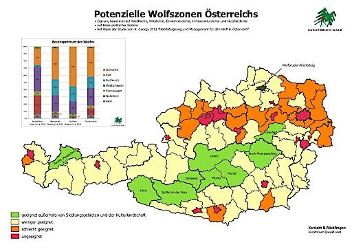 Der Wolf In Osterreich Was Zu Tun Ist Kuratorium Wald 31 08 2018
