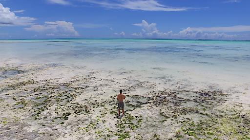 Praktikant 2017 am Strand von Sansibar
