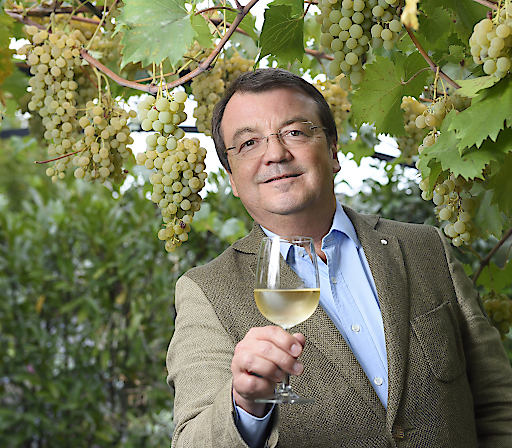 Chef des Österreichischen Weinmarketings, Willi Klinger