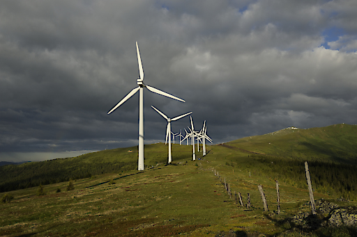 Windkraft ist eine wichtige erneuerbare Energiequelle, die aber nur dort, wo es ökologisch und ökonomisch sinnvoll ist, genutzt werden soll.