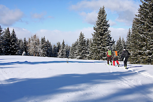 Skitouren gehen im Naturpark Zirbitzkogel-Gebenzen