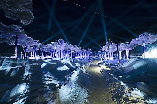 Das mehrfach preisgekrönte Lichtfestival in den Swarovski Kristallwelten in Wattens bietet eine einzigartige Symbiose aus Licht und Klang.