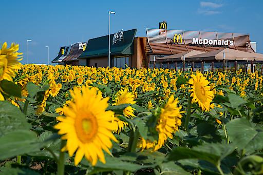 McDonalds Österreich Restaurant in Schwechat