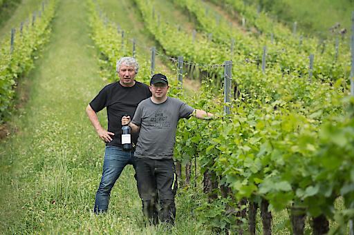 Friedrich und Lukas Rieder im Weingarten