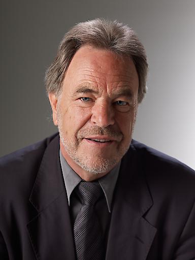 Professor Dr. Ronald Schmid