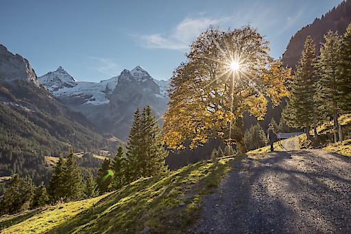 Wanderung auf der Rosenlaui, Berner Oberland