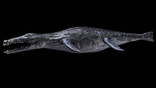 Pliosaurier, Reko Lukeneder NHM Wien by 7reasons