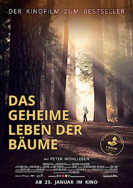 Das Geheime Leben Der Baume Ab 23 Januar 2020 Im Kino Foto Constantin Film 16 10 2019