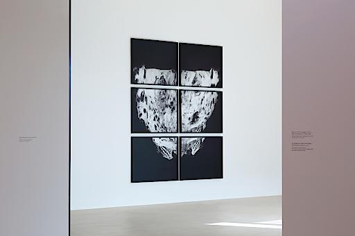 """Ausstellungsansicht """"Michael Höpfner. Durchwanderte Kreisläufe"""", Foto: Christian Redtenbacher"""