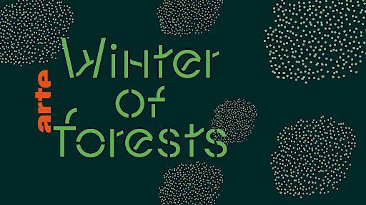 """Der """"Winter of Forests"""" - vom 12. bis zum 25. Januar auf ARTE / Weiterer Text über ots und www.presseportal.de/nr/9021 / Die Verwendung dieses Bildes ist für redaktionelle Zwecke honorarfrei. Veröffentlichung bitte unter Quellenangabe: """"obs/ARTE G.E.I.E."""""""