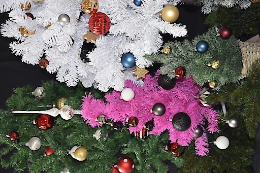 Langlebige Schadstoffe in Weihnachtsbäumen