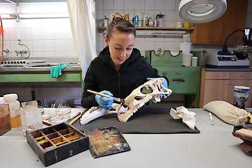 Saurier-Knochen als 3D-Scan am NHM Wien