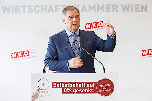 Wirtschaftskammer Wien-Präsident Walter Ruck