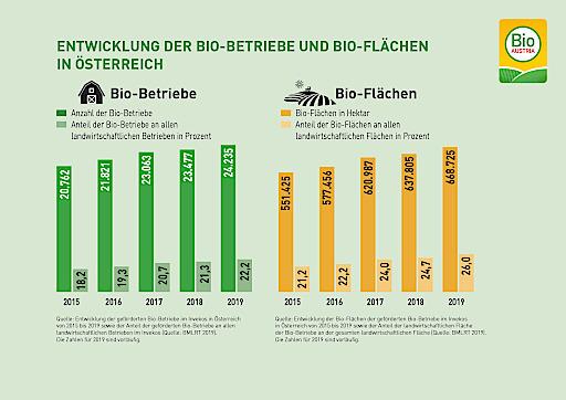Entwicklung der Bio-Flächen und Bio-Betriebe in Österreich